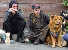 Berliini kodutute koerad said oma supiköögi