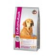 Eukanuba koeratoit kuldsele retriiverile - 12 kg