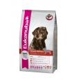 Eukanuba koeratoit labradori retriiverile - 12 kg