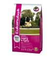 Eukanuba koeratoit sportkoerale ja aktiivsele koerale - 15 kg