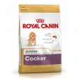 Royal Canin kutsikatoit cockerspanjelile, 6 kg
