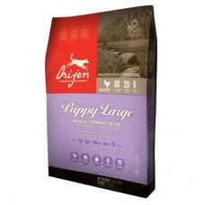 Orijen Dog Puppy Large Breed teraviljavaba kutsikatoit suurt tõugu kutsikale, 11,4 kg