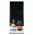 Pro Plan Dog Medium Large Adult koeratoit 7+ vanustele koertele, kanalihaga, 14 kg