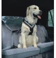 Allsafe kvaliteetsed koera turvatraksid