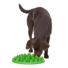 Koera aktiveeriv söögikauss keskmist ja suurt kasvu koerale
